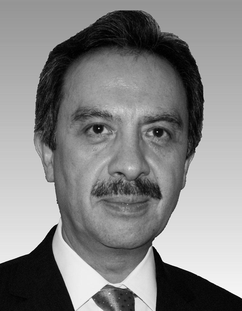 Dr. Alfonso Miguel Kageyama Escobar