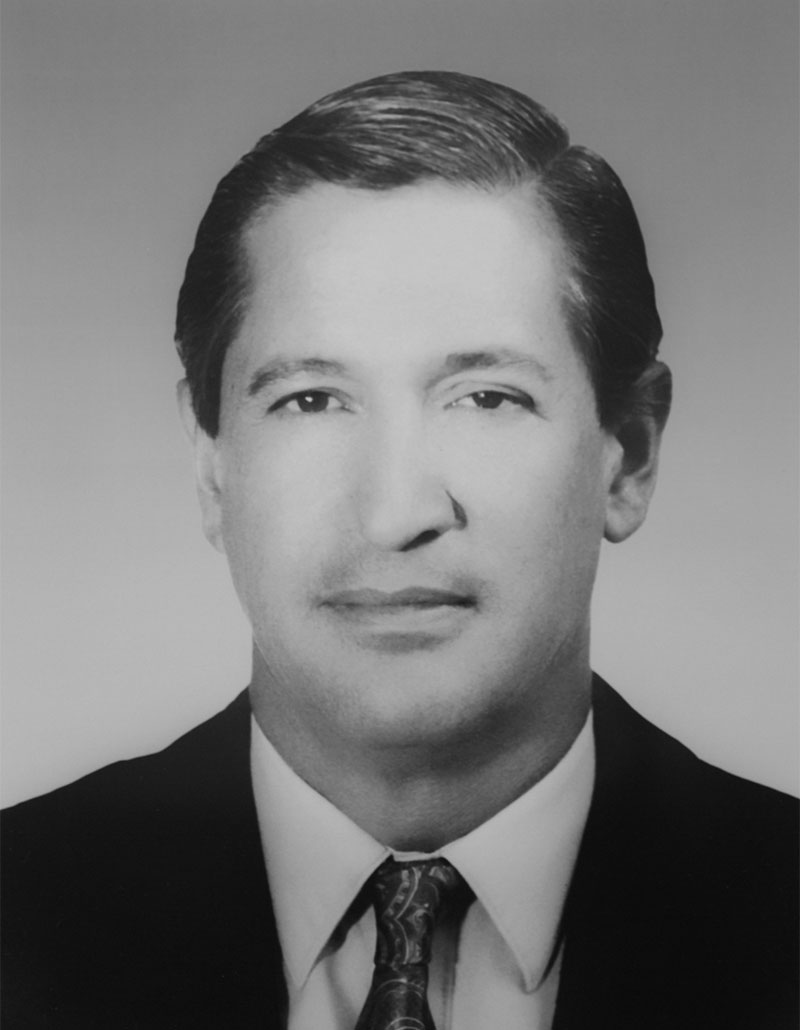Dr. Raúl Mereles del Valle