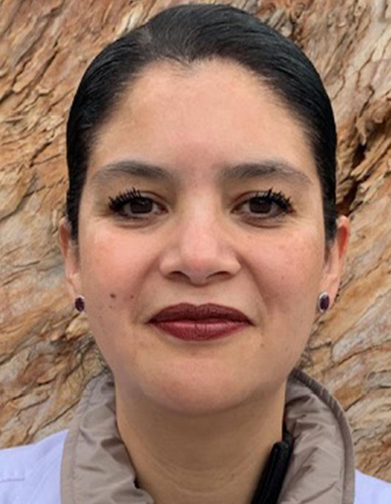 Dra. Lisette Cristerna Sánchez